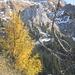 Tannheimer Hütte im Herbstlook