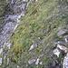 Ein bequemes Weglein führt am rechten Rand der Rinne nach oben.