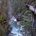 Auf einem Steg geht es in den Johnston Canyon