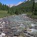 Am wunderbaren Johnston Creek entlang geht es in den tiefen Wald zu Larry's Camp