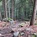 Aufwändig angelegter, recht mühsam zu begehender Weg oberhalb des Chäsgaden.