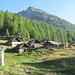 Alpe Quadrella