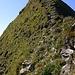 Kurz vor dem Gipfel des Tannhorns wird es nochmals recht steil