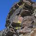 Wyssgrat-Südflanke 2