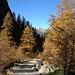 Herbst im Val Chamuera - Blick zurück mit Piz Kesch