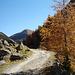 Herbst im Val Chamuera II