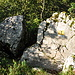Der Felsvorsprung von oben: sieht aus, wie ein ganz loser Backenzahn... ganz links bin ich hochgekommen.