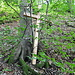 """Im Waldstück direkt unterhalb des Burghorns finde ich einen """"[http://www.hikr.org/gallery/photo685223.html?post_id=44871#1 alten Bekannten]"""", anscheinend wurde der """"entsorgt""""."""
