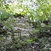 Im obersten, letzten Aufstieg III: Rechts an diesem Felsvorsprung vorbei und man landet ca. 5 m östlich von den Burghorn-Sitzbänkchen.