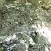 Geologische Strukturen in der Nahaufnahme III.