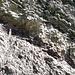 Geologische Strukturen in der Nahaufnahme IV.