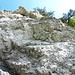 Geologische Strukturen VIII.