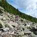 Dafür ein breiter Weg im Abstieg zur Alpe Foppascia.
