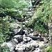 Bachlauf mit kleinem Wasserfall am Aufstieg