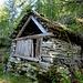 Der recht gut erhaltene Stall von Alpe Cauradisc 1602m