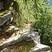 Uralte Steintritte - und immer noch hilfreich
