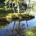 Riflessi nel Lago di Misurina
