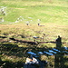 Der durchgehend 35 Grad steile Frümselaufstieg im Gras