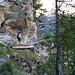 auf dem Weg zum Berggasthaus Trift