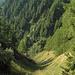 steiler Grashang  unter  dem Alpweg