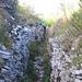 Il sentiero scende dal Monte Testo percorrendo le trincee austriache.
