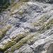 Zwischen Rautistock und Wiggis sind herrliche Kalkformationen zu bewundern