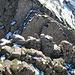 ... mit seinen kühn senkrecht aufragenden Felsschichten