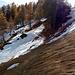 Schnee und glattes Gras. Eine vorsichtgebietende Kombination.