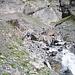 ...und einige Bachüberquerungen, die bei Hochwasser nicht einfach sind!