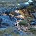 Fotografische Spielerei mit einem kleinen Tümpel, ca. 30 min von der Winnebachseehütte.