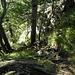 sehr steiler Abstieg mit Drahtseil