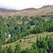 Die Hütten Bististafel, darüber im Nebel der Bistinepass