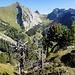wunderschönes kleines Gipfelplateau - mit ebensolchem Ausblick