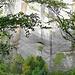 Besonders jetzt im Herbst präsentiert sich die Schlucht von der malerischen Seite.