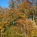 Herbststimmung.