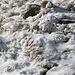 Vom Wind geformte Eisblumen.