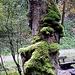 Moosmenschen erklettern den Baum