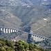 Autostrada dei Fiori, von Genua bis Ventimiglia eine Aneinanderreihung von Viadukten und Tunnelbauwerken