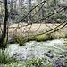 Am Ufer des Sees sind noch Wasserreste