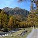 Val Susauna im Herbstkleid