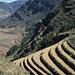 Auf diesem Bild setzen sich die geschwungenen Inka-Terrassen im Bildvordergrund wie selbstverständlich fort in die heute noch genutzten Terrassen im Hintergrund.
