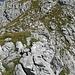 Gleich oben (die Gipfelkapelle befindet sich wenige Meter links oben außerhalb des Bildes)