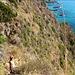 im Abstieg zum Praia del Fuoco