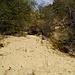 Das abfließende Wasser 'versteinert' quasi alles bis hinunter ins Tal der Supersach (Blick von unten).