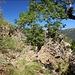 wunderschöne Querung unterhalb der Puntana Galera
