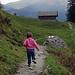 Blick zum Tschuggen [tour44030 Tschuggen, Lauberhorn; Ende November über 2500m schneefrei]