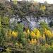 ... und anschliessend malerische Herbstbilder zeigt ...