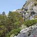 Im Abstieg zum Trnovačko jezero / Трновачко језеро - Rückblick. In Seenähe führt der Weg durch ein Waldstück und hier auch gröbere Blöcke.