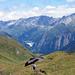 Alpe Bovarina: Blick auf den Lago di Luzzone