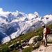 Rosegg-Gletscher (rechts) und SellaGletscher (links) sind 1989 noch 'mächtige' Eisströme und fließen im Talgrund zusammen. [http://www.hikr.org/gallery/photo388248.html?post_id=29208#1 Heute] ist der Sellagletscher (wie viele andere) nur ein Schatten seiner selbst.